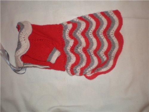 вязание для собак Mmodnayaru