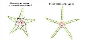 starfishesschema3