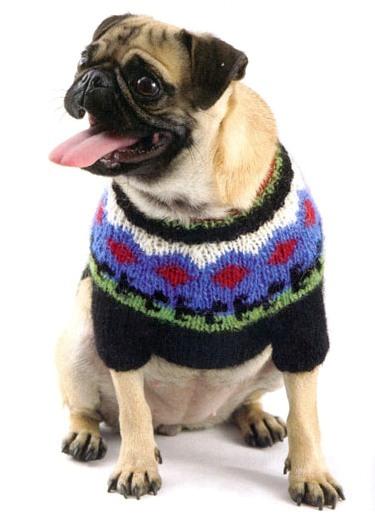 Джемпер для собаки