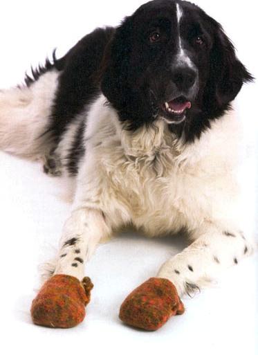 Вязаные тапочки для собаки