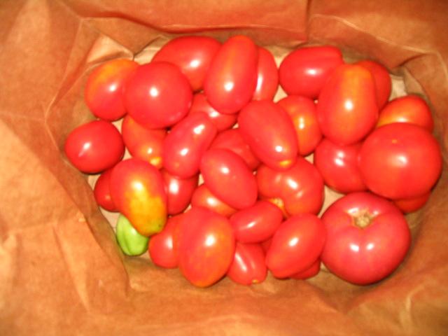 помидоры в бумажном пакете