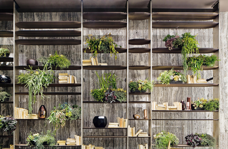 стена в растениях
